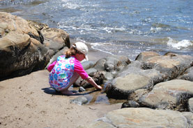 Rocky Maine Beaches