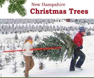 NH Tree Farms