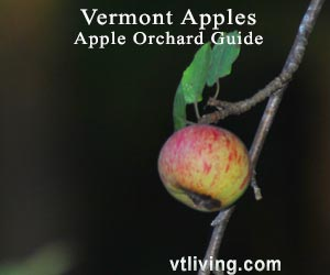 VT Apple Orchards
