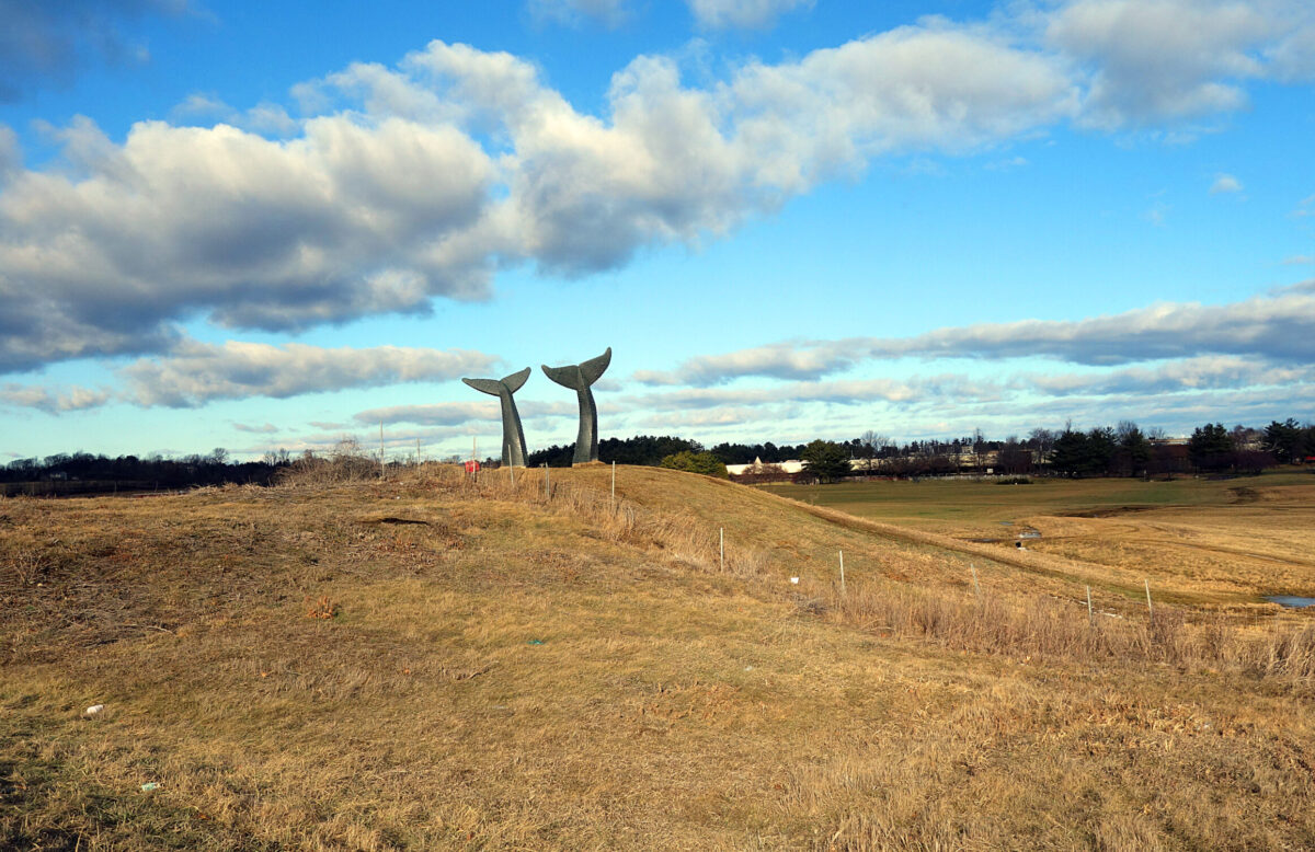 Vermont Attractions from VTLiving