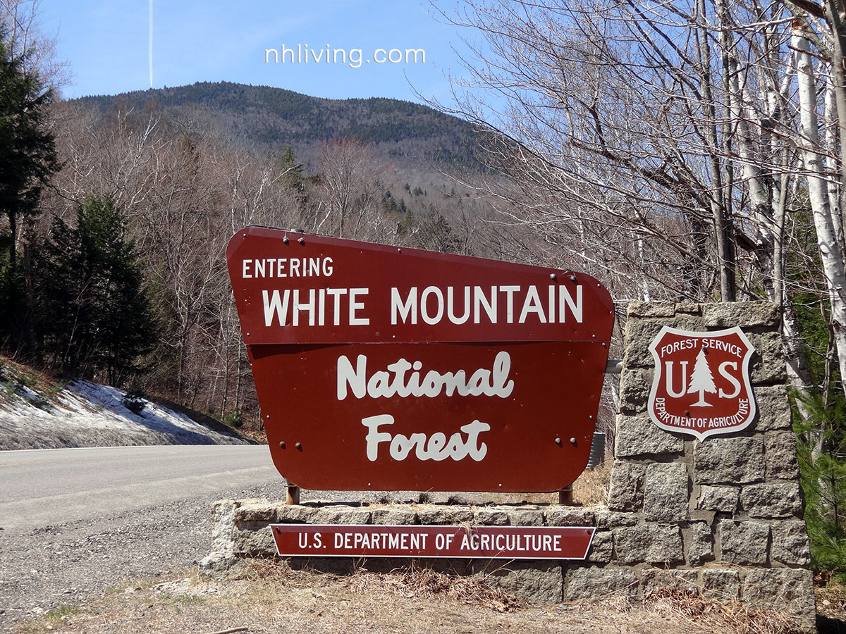White Mountain National Forest USDA