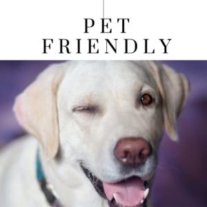 Pet Friendly New England Lodging